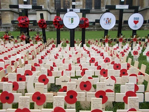 Field Of Remembrance 8 Nov 2018
